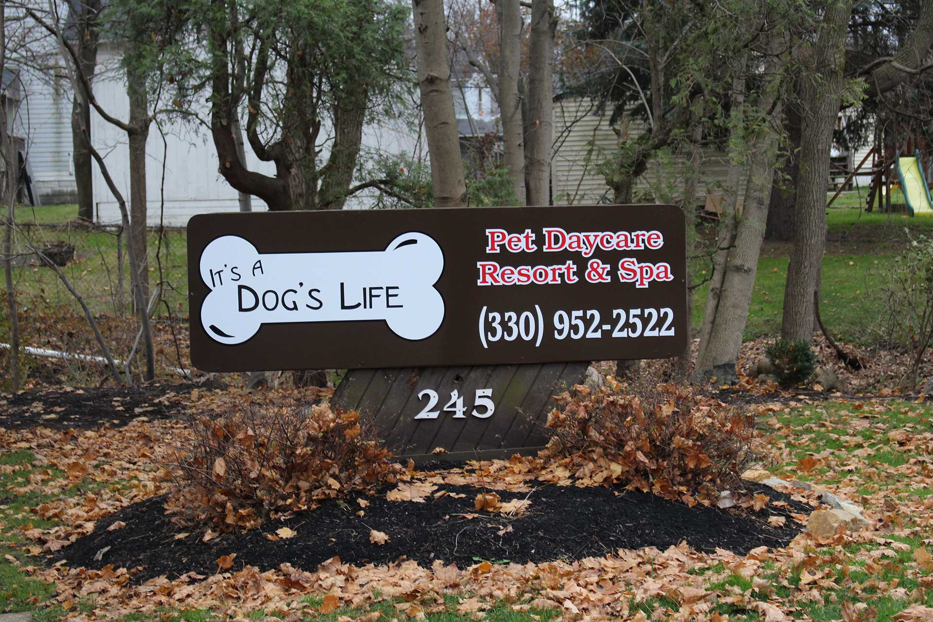 about-its-a-dogs-life-pet-daycare-resort-and-spa