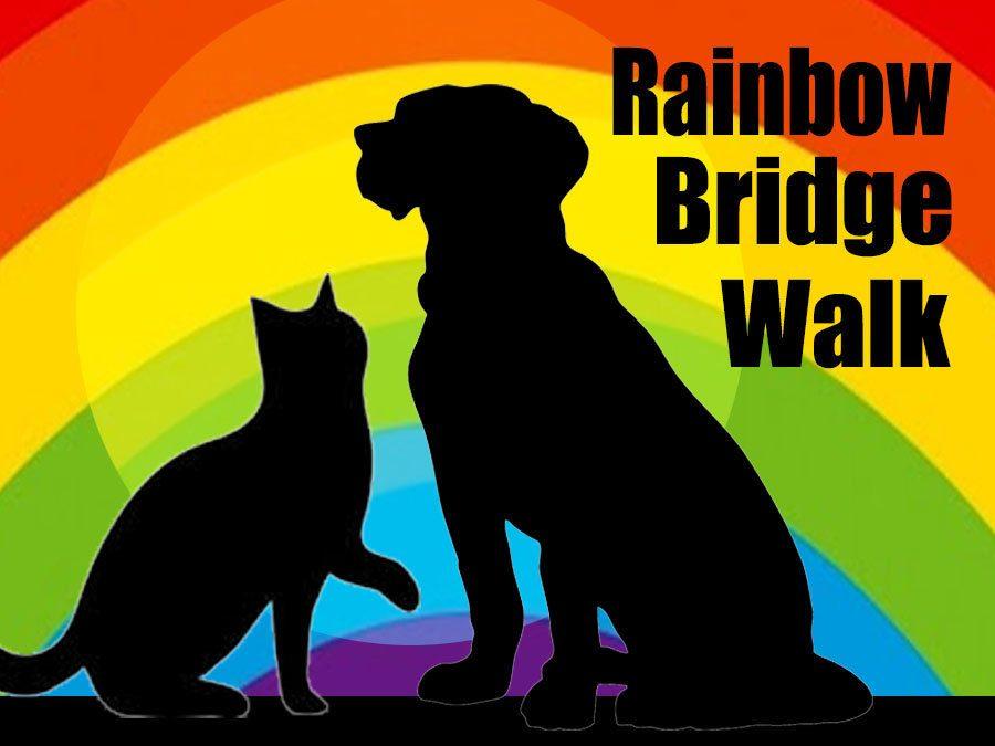 Medina Rainbow Bridge Walk September 16, 2018